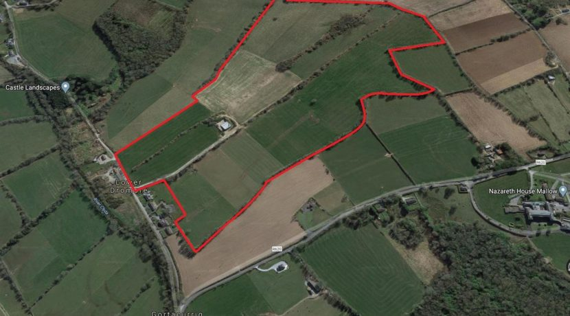 Beautiful arable land in Dromore, Dromahane, Mallow, Co Cork