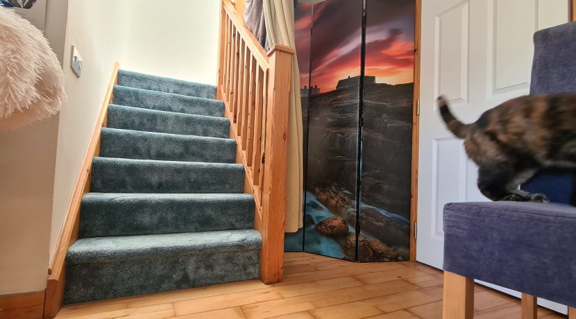 Cloakroom and stairs villa 16 carleton village youghal co cork